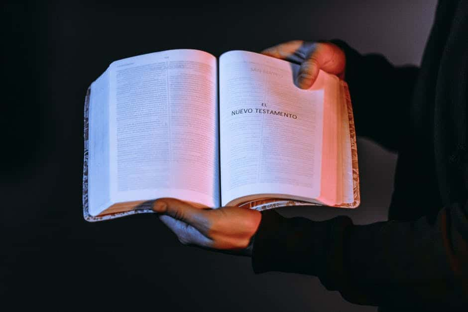 A hand holding a bible